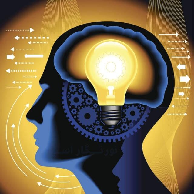 بدن انسان نسبت به نور محیط واکنش نشان می دهد.